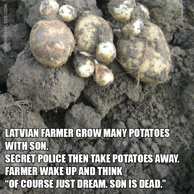 "Latvian farmer grow many potatoes with son. Secret police then take potatoes away. Farmer wake up and think ""Of course just dream. Son is dead."""