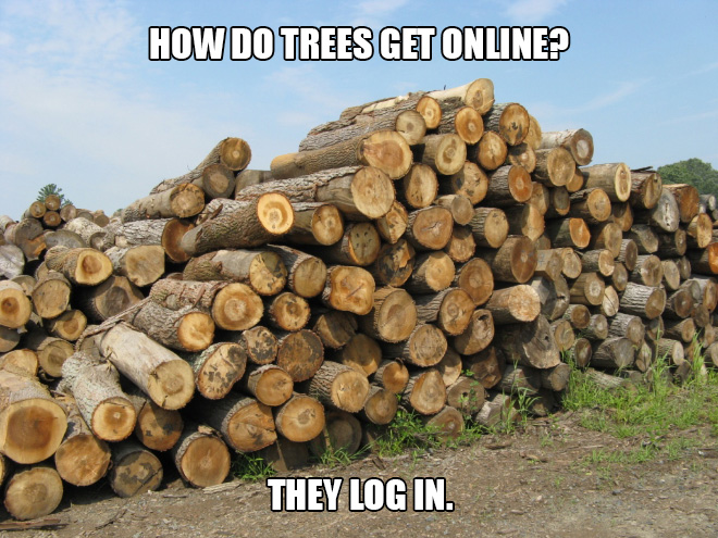 How do trees get online? They log in.