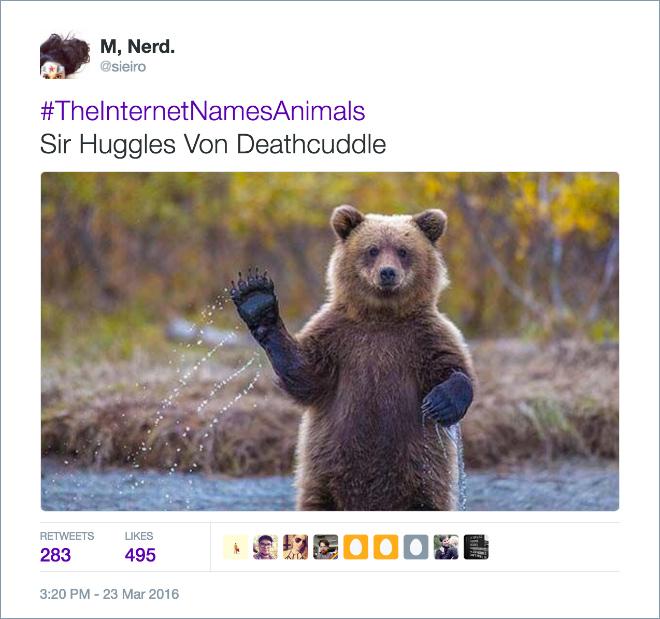 Internet Hilariously Renames Animals Using