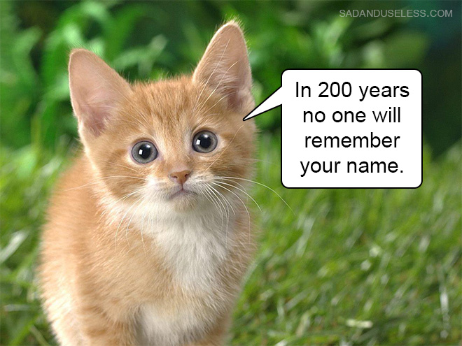 Cats Name Aimal