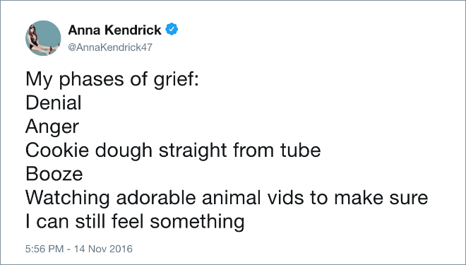 My phases of grief: Denial, Anger, Cookie dough straight from tube, Booze, Watching adorable animal vids to make sure I can still feel something.