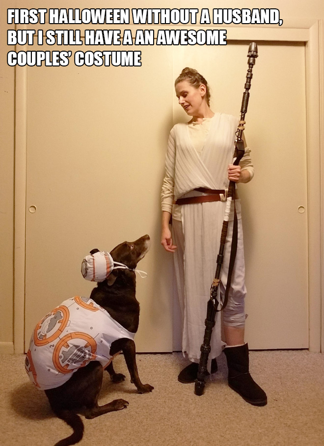 Star Wars Halloween costume with a dog.