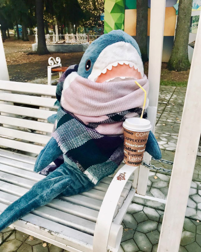 Shark enjoying coffee.