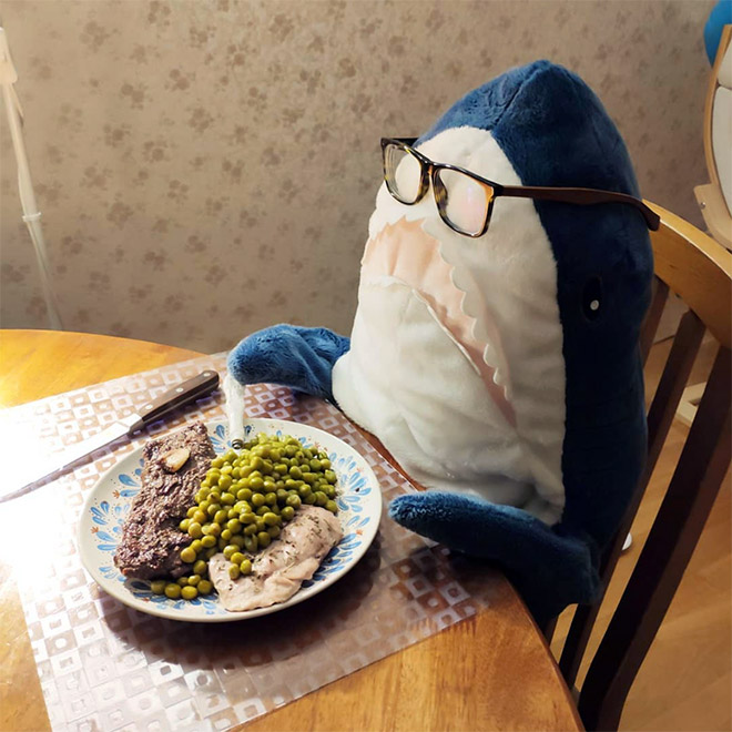 Shark eating dinner.