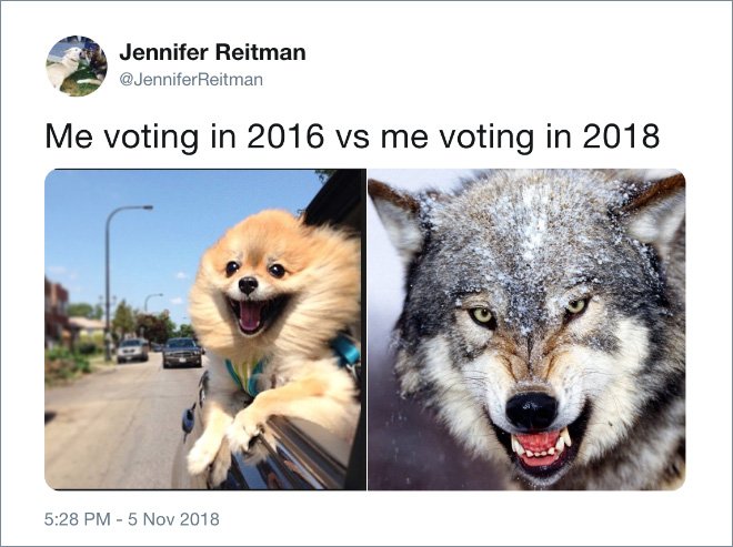 Me voting in 2016 vs me voting in 2018.