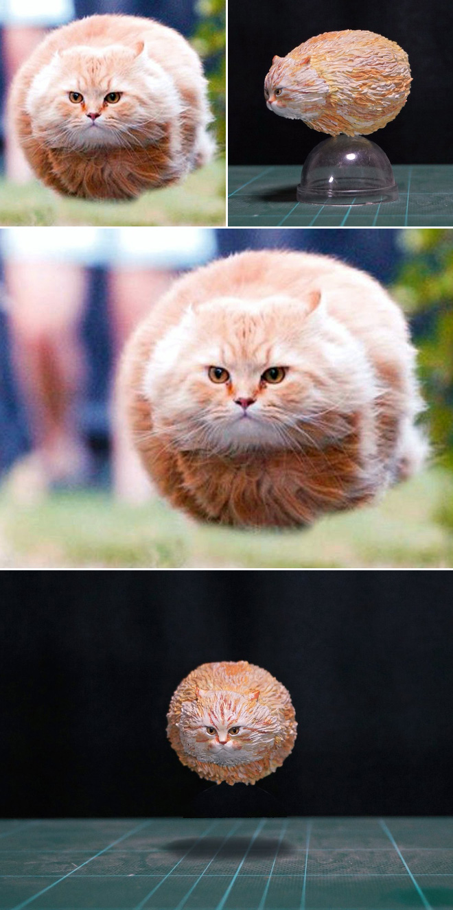 Levitating cat sculpture.