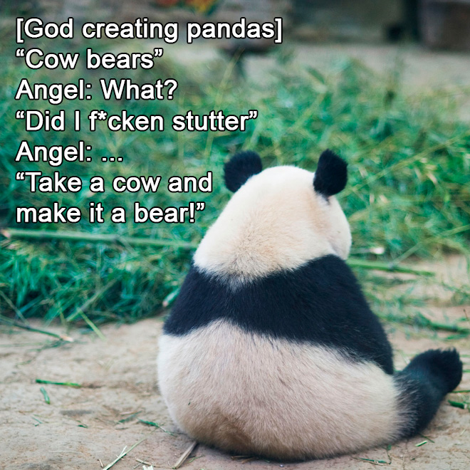 How God created pandas.