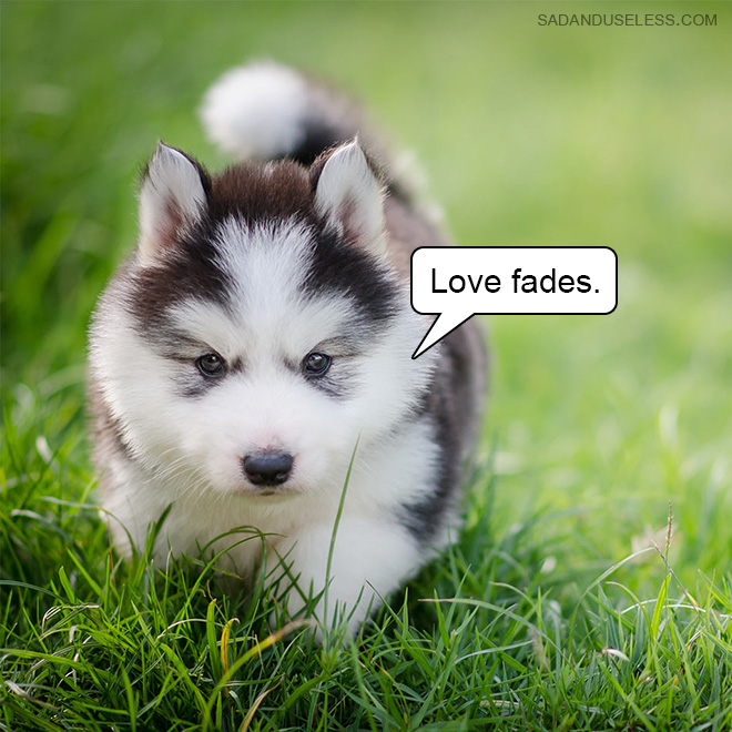 Love fades.