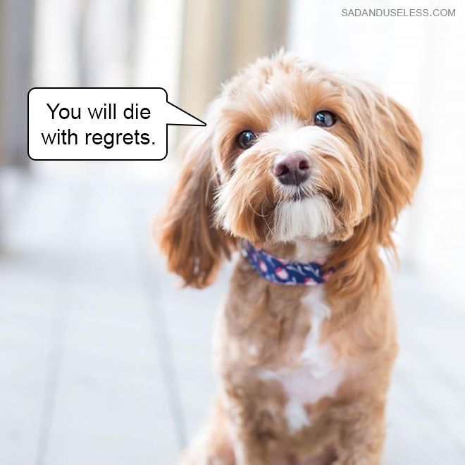 You will die with regrets.