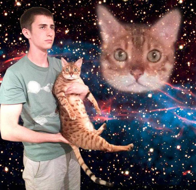 Futuristic photo with a cat.