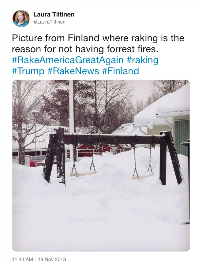 Picture from Finland where raking is the reason for not having forrest fires.