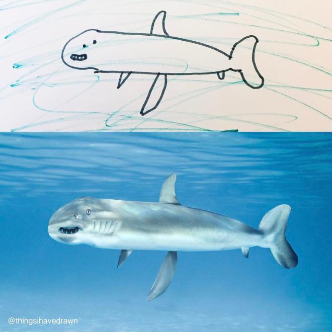 Shark doodle comes alive.