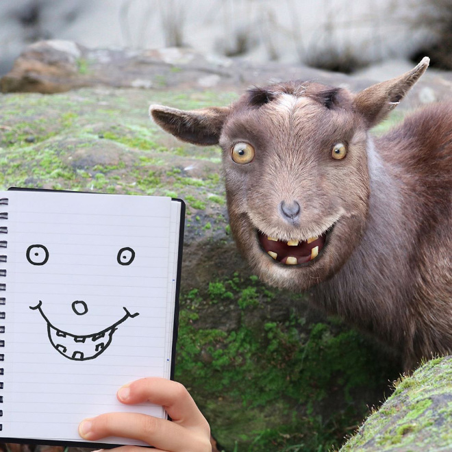 Child's doodle comes alive.