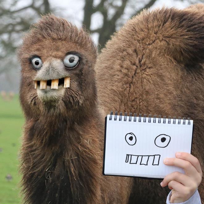Doodle camel comes alive.
