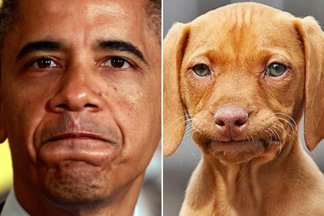 Obama and his dog.