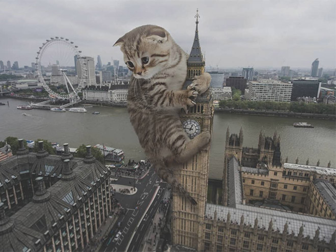 Giant kitten vs. London.
