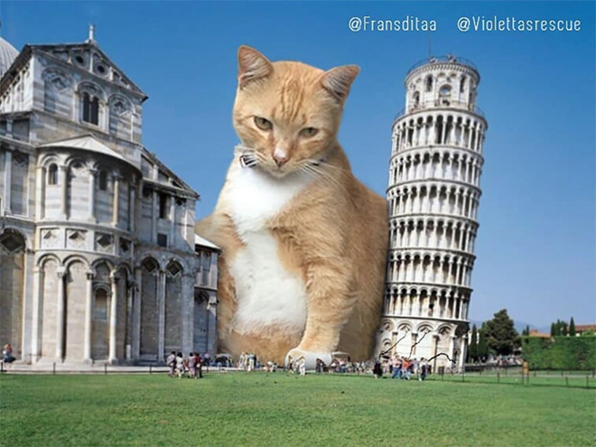 This is why Pisa tower doesn't stand straight.