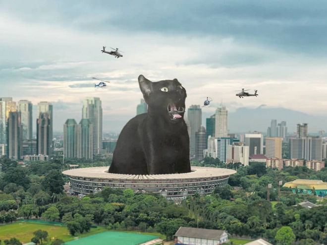 Cat King Kong vs. army.