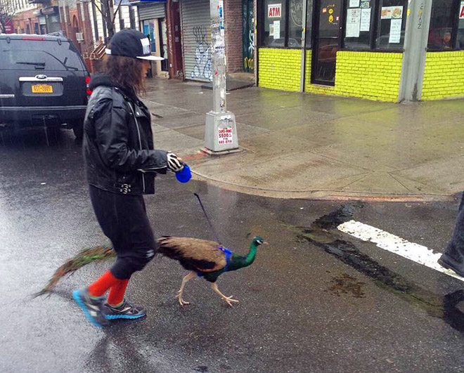 Hipster with her pet.