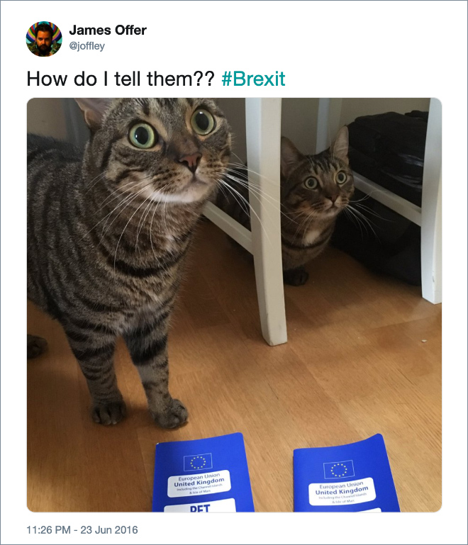 The Funniest Brexit Tweets