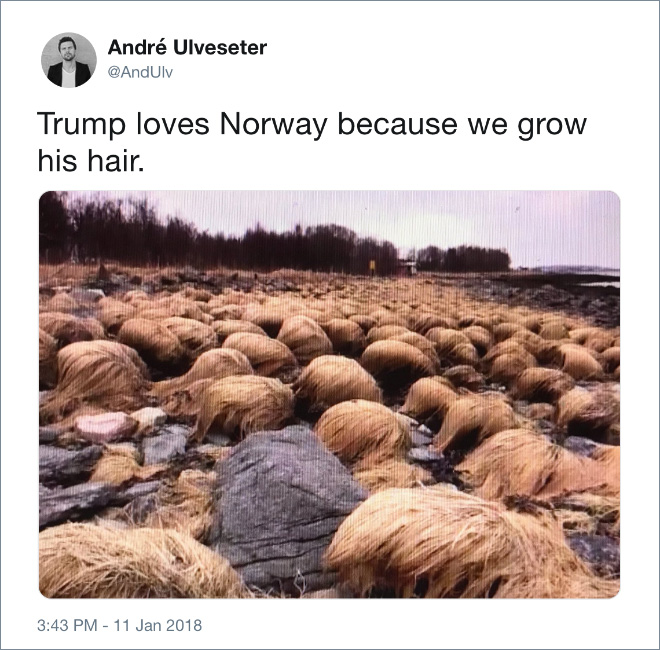 Trump loves Norway because we grow his hair.