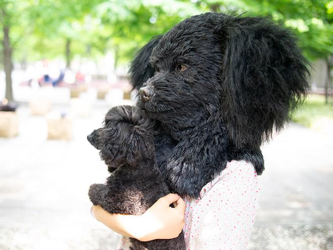 Realistic dog mask.