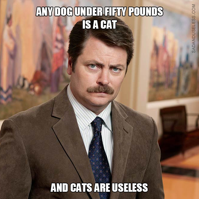 Any dog under fifty pounds is a cat, and cats are useless.