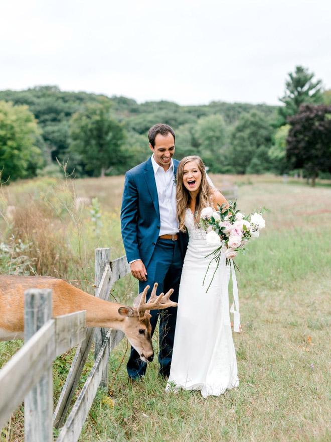 Wedding photo shoot interrupted by a deer.