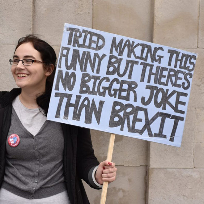 Funny British EU supporter sign.