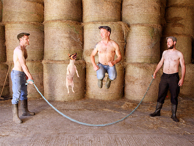 A photo from Irish farmer calendar.