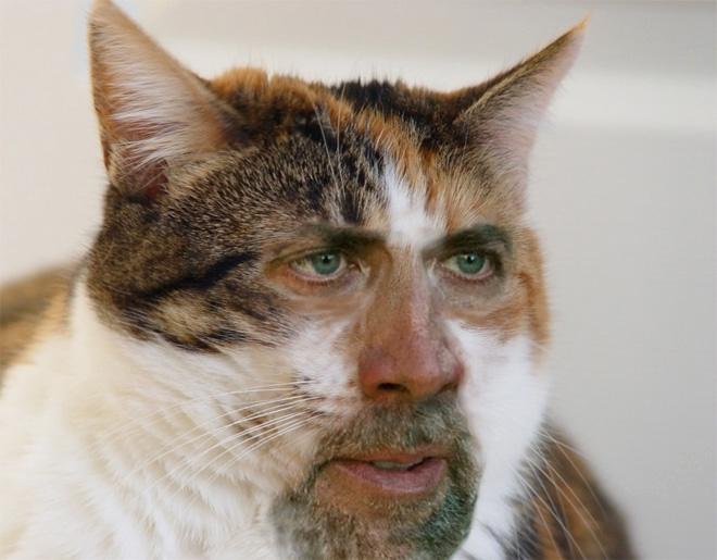 Nicolas Cage meets Photoshop.