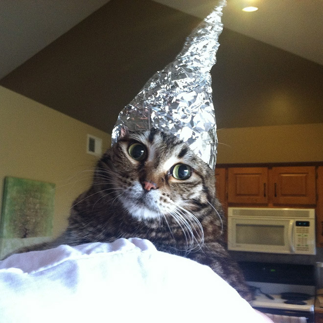 Tin foil hat against mind control!