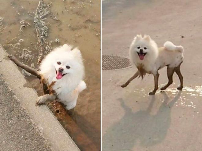 Funny mud legs.