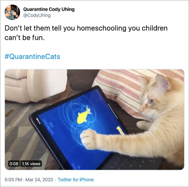 Homeschooling can be fun.