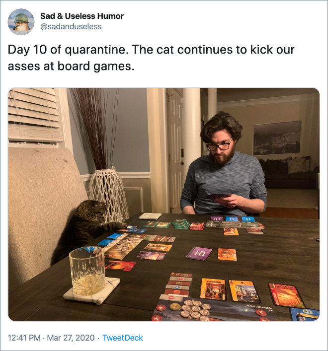 Day 10 of quarantine. The cat continues to kick our asses at board games.