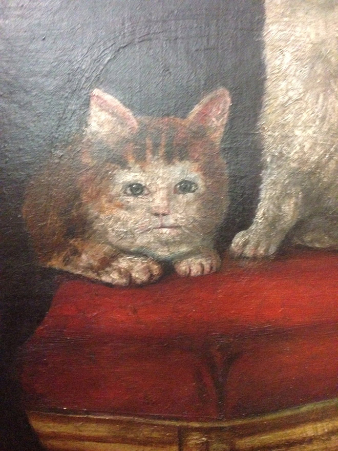 It looks like the medieval painters never laid eyes on a cat.