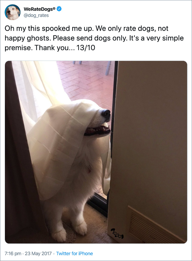 Oh my this spooked me up. We only rate dogs, not happy ghosts. Please send dogs only. It's a very simple premise. Thank you... 13/10