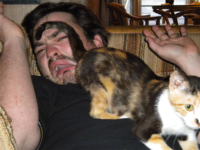 Cats are evil, purr evil.