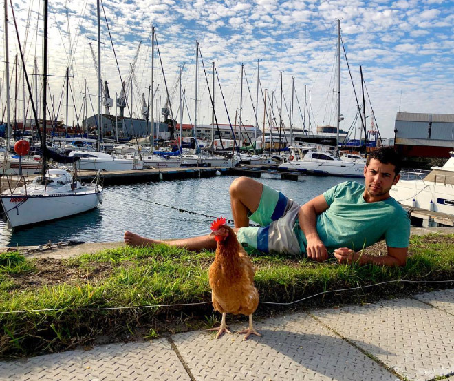 This guy sails around the world with his pet chicken.
