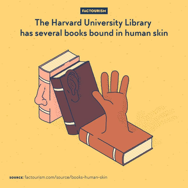 Anthropodermic bibliopegy. That is the proper name for binding books with human leather rather than another animal's. A morbid practice that was occasionally done in the 19th century and earlier. Some of the resulting books are now conserved in the Harvard Library at Harvard University.