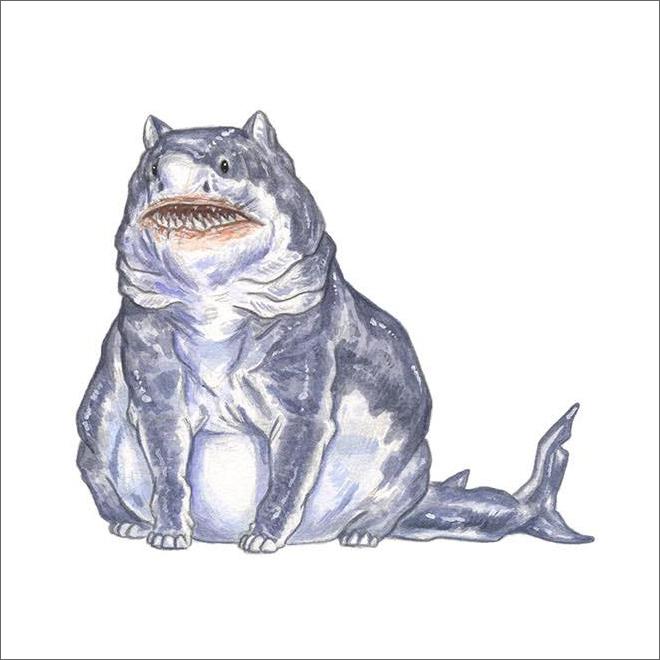 Shark cat or cat shark?