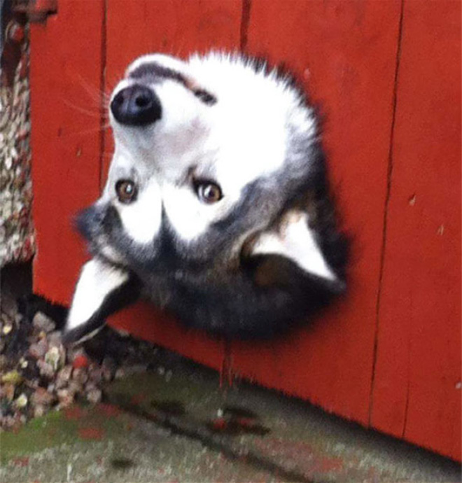 Stuck, bur pretending everything is fine.