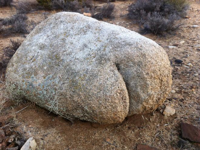 Looks like a butt, doesn't it?