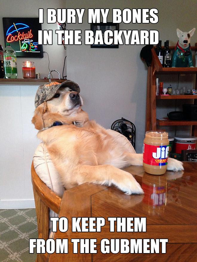Redneck retriever.