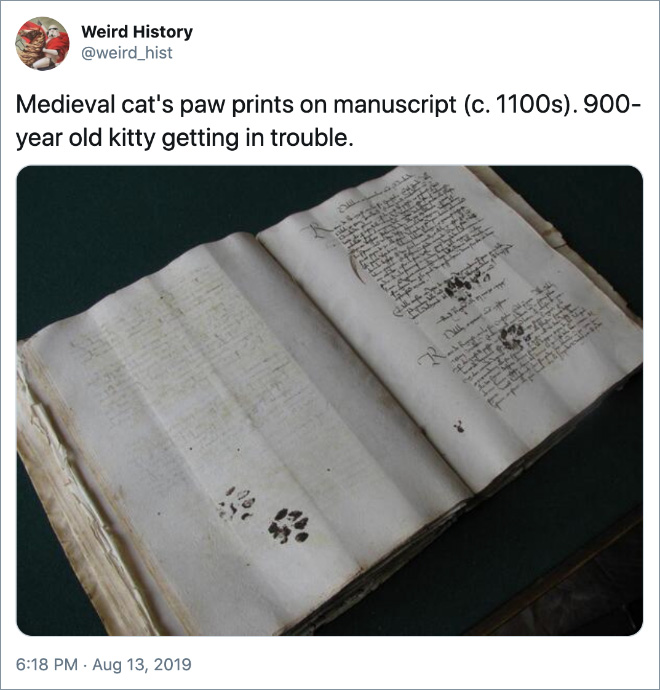 Medieval cat's paw prints on manuscript (c. 1100s). 900-year old kitty getting in trouble.