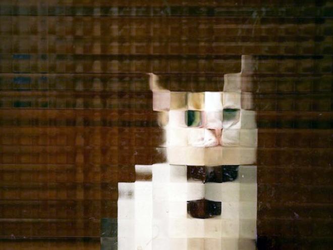 Low resolution cat behind pixelated glass doors.