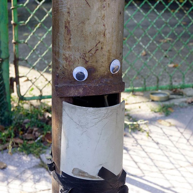 Everything is better with googly eyes.
