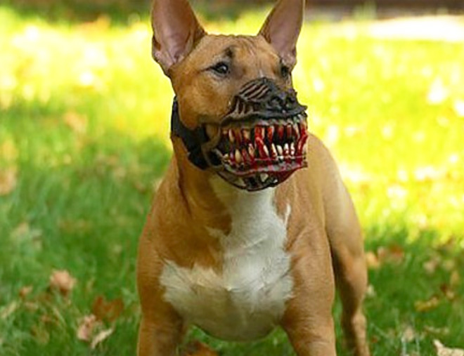 This muzzle will scare the hell out of everyone.