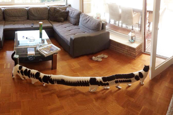 Panoramic photo fail.