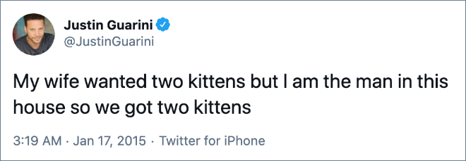 My wife wanted two kittens but I am the man in this house so we got two kittens